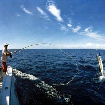 fishing - home