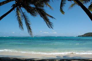 Beach 320x213 - Beach