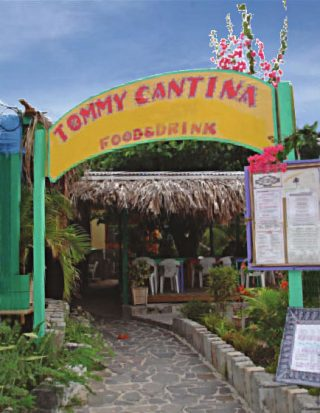 Tommy Cantina 320x413 - Tommy Cantina