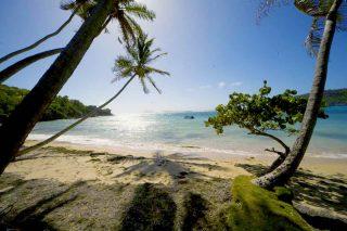 beach4 320x213 - beach4