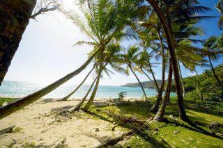 beach5 320x213 - beach5