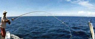 fishing 320x133 - fishing