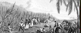 slavery 320x133 - slavery