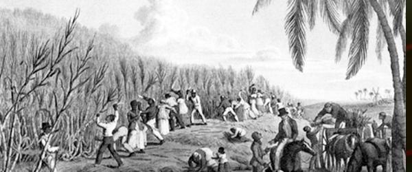 slavery - Discover Bequia